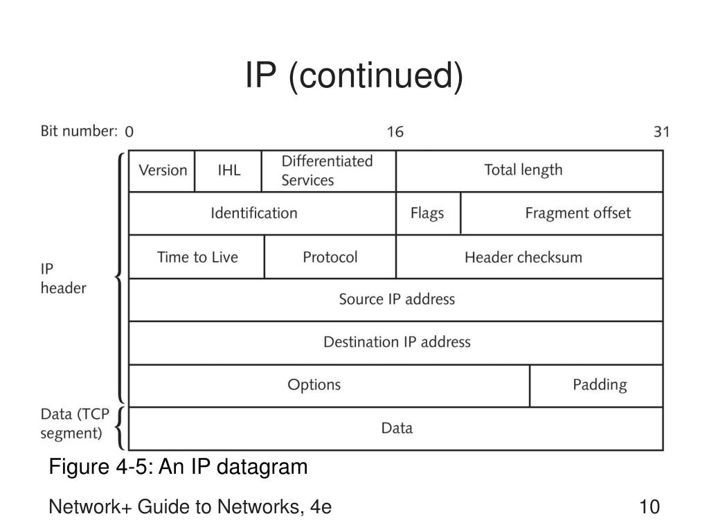 IP (continued)