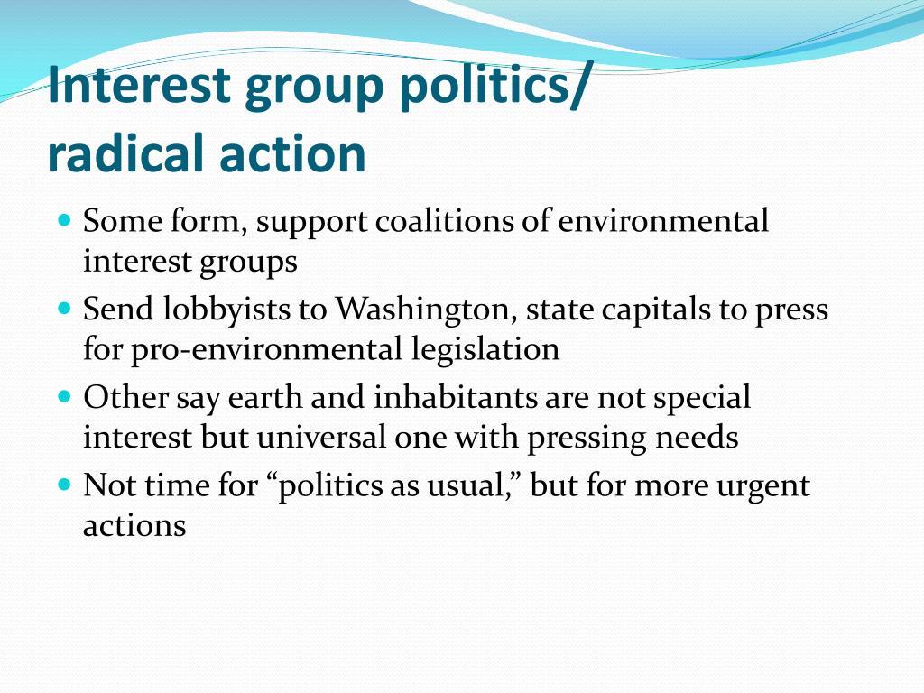 Interest group politics/