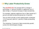 why labor productivity grows32