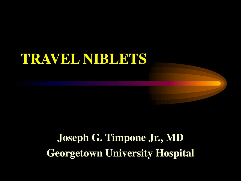TRAVEL NIBLETS