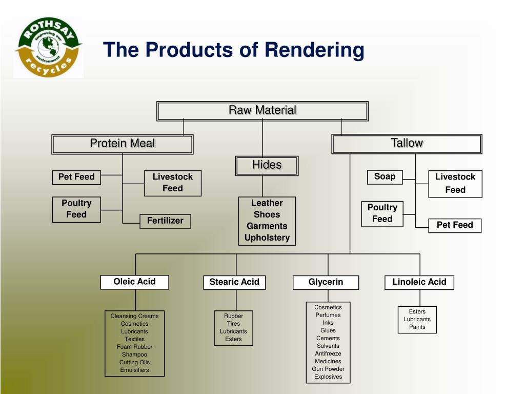 The Products of Rendering