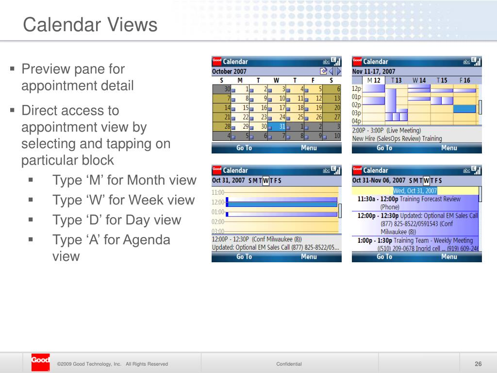Preview pane for appointment detail