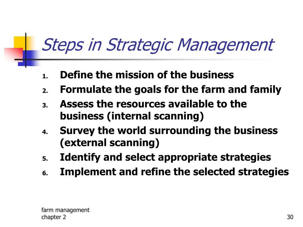 Steps in Strategic Management