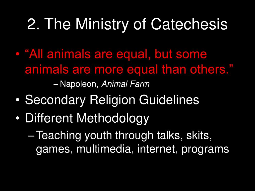 2. The Ministry of Catechesis