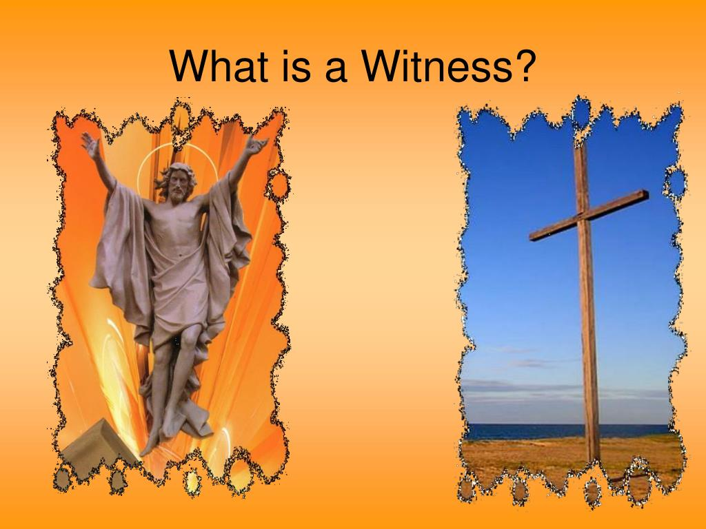 What is a Witness?