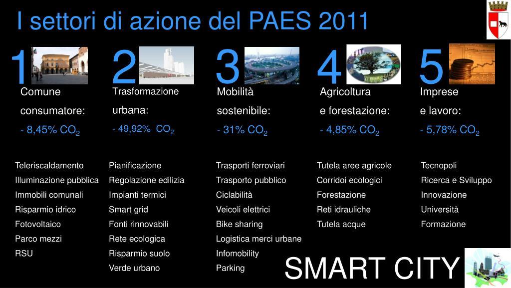 I settori di azione del PAES 2011