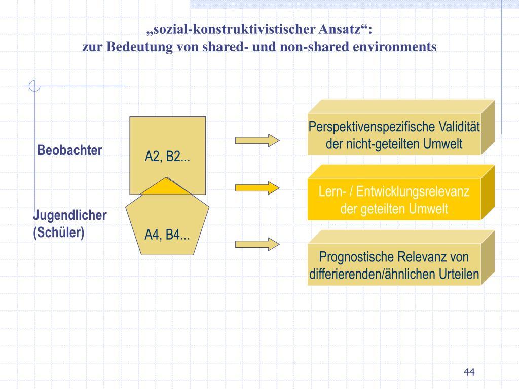 """""""sozial-konstruktivistischer Ansatz"""":"""