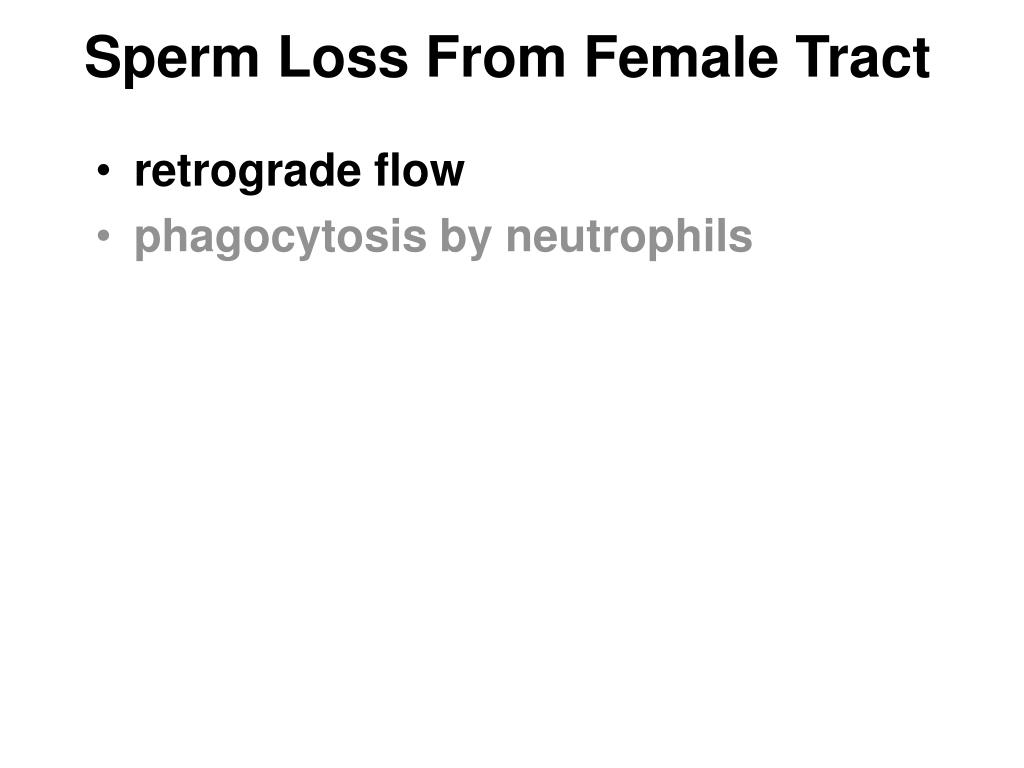 Sperm Loss From Female Tract