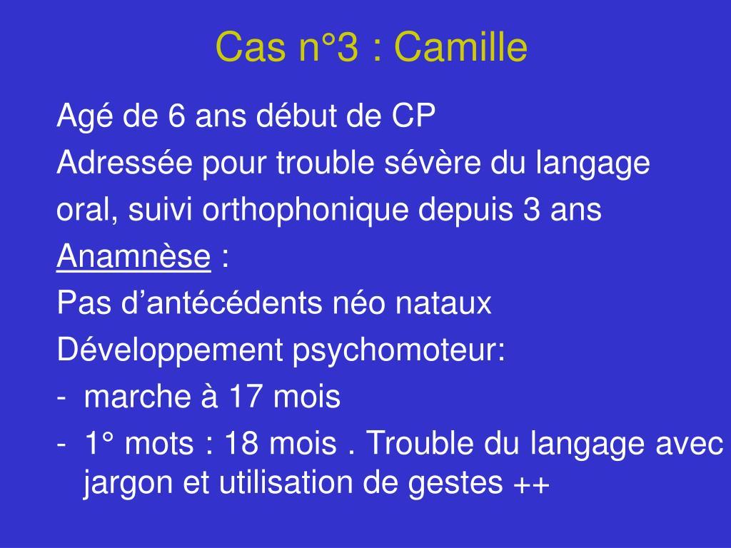 Cas n°3 : Camille