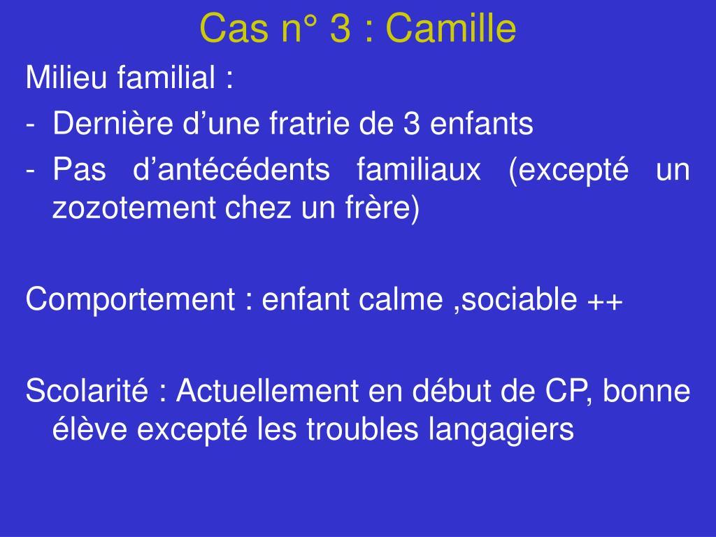 Cas n° 3 : Camille