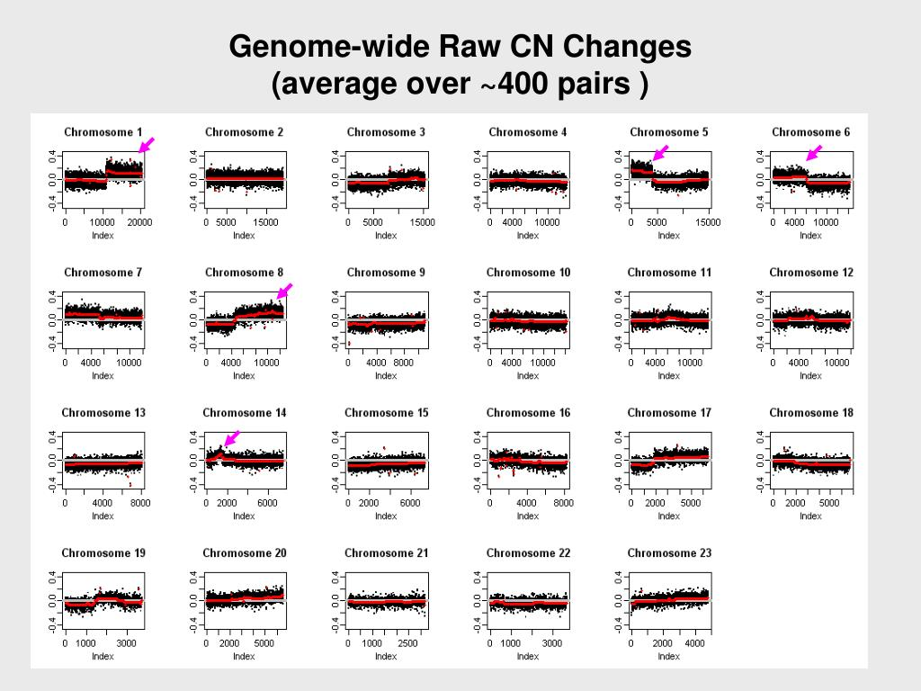 Genome-wide Raw CN Changes