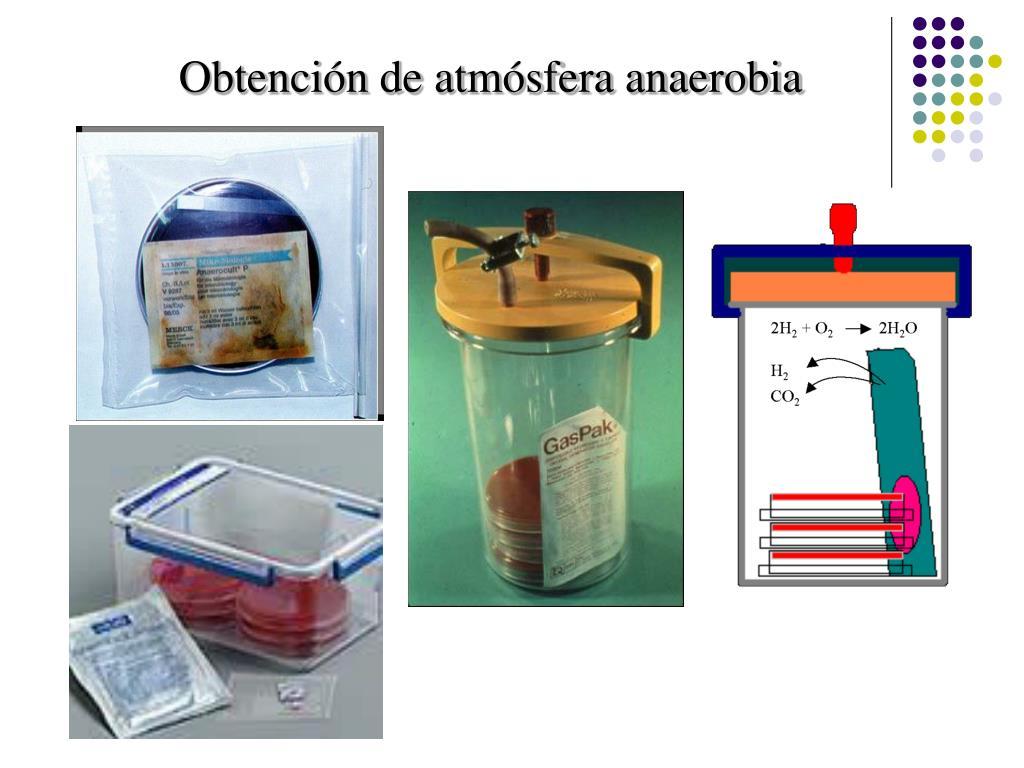 Obtención de atmósfera anaerobia