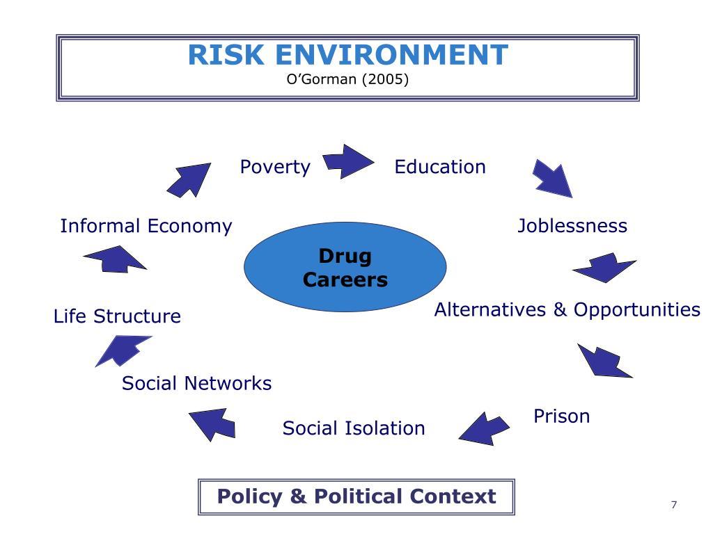 RISK ENVIRONMENT