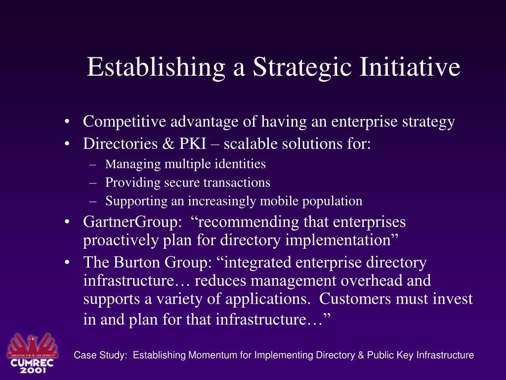 Establishing a Strategic Initiative