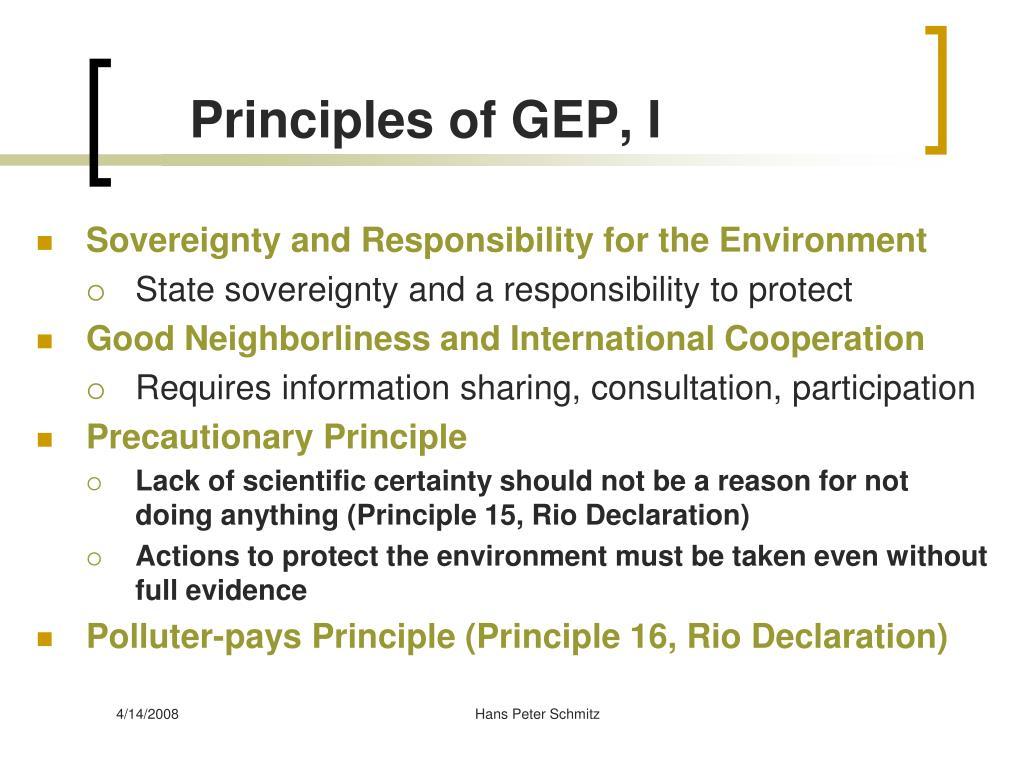 Principles of GEP, I