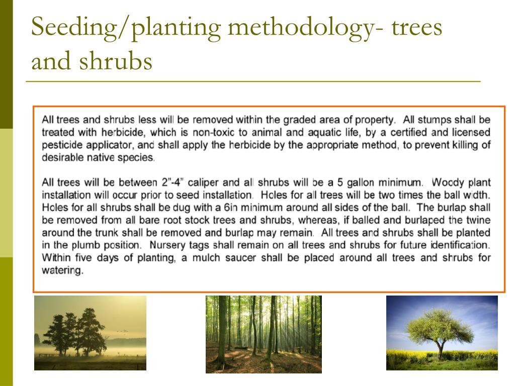 Seeding/planting methodology- trees and shrubs
