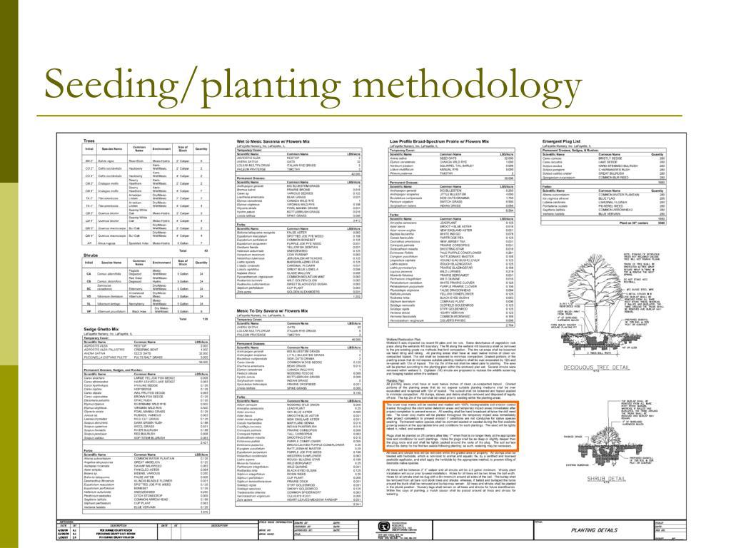 Seeding/planting methodology