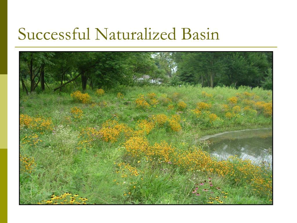 Successful Naturalized Basin