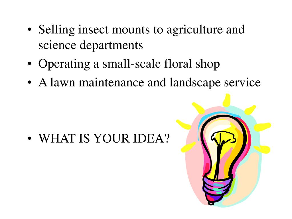 Selling insect mounts to agriculture and science departments