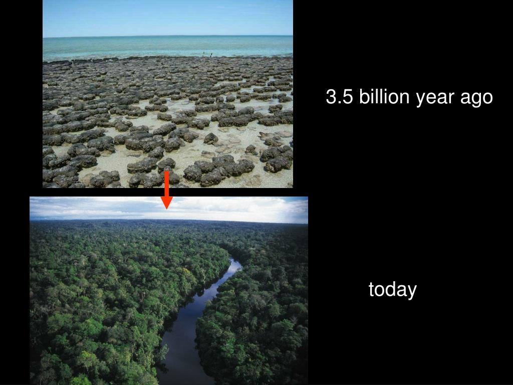 3.5 billion year ago