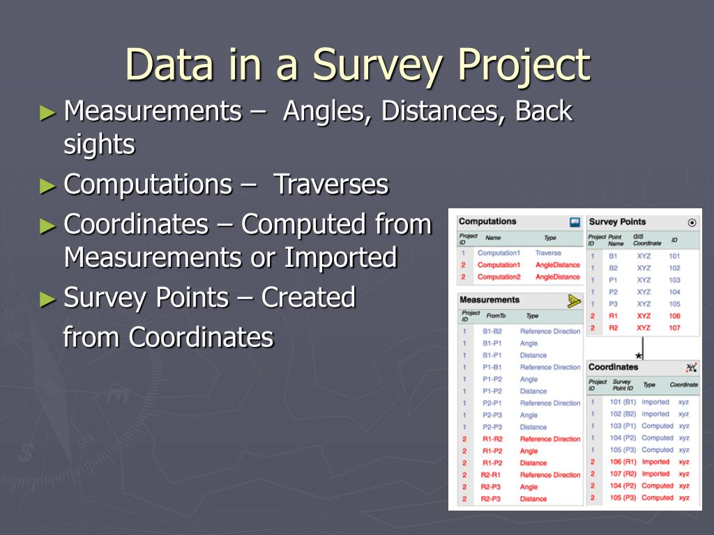 Data in a Survey Project