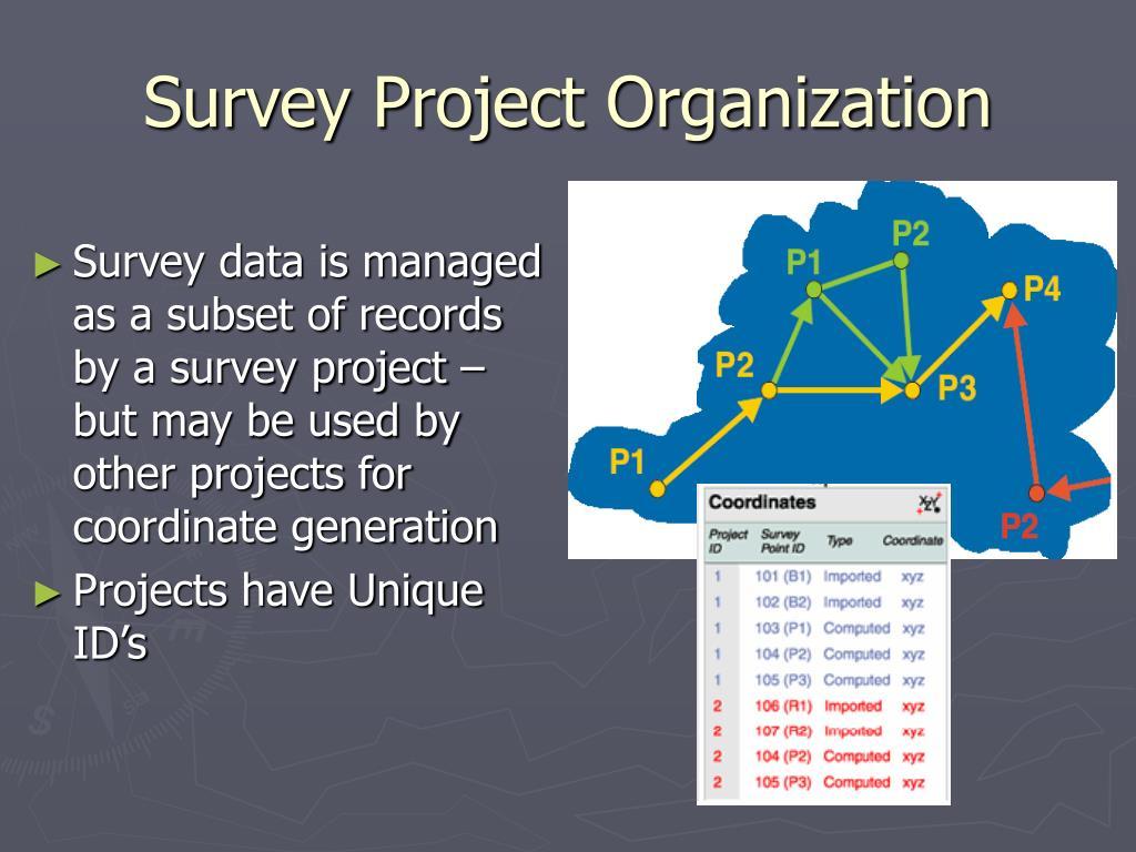 Survey Project Organization