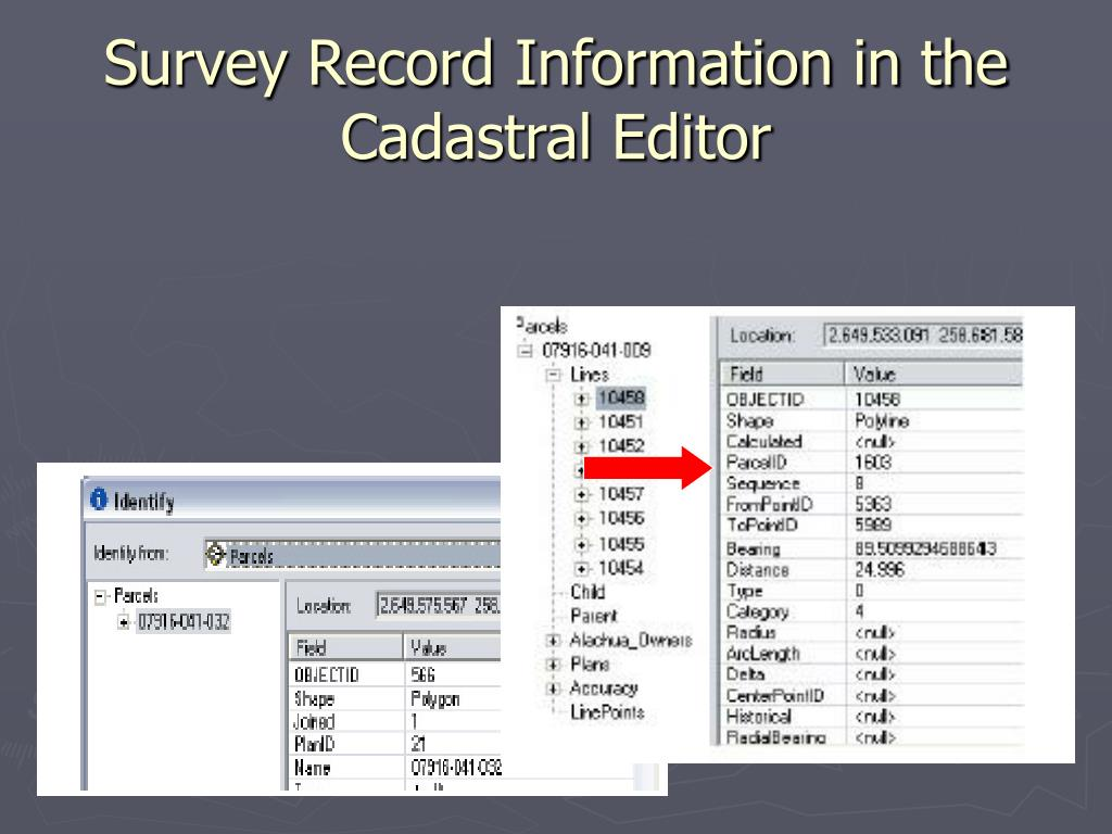 Survey Record Information in the  Cadastral Editor