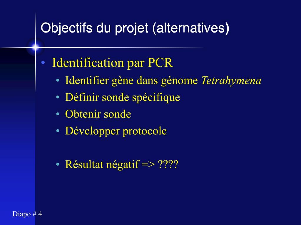 Objectifs du projet (alternatives)