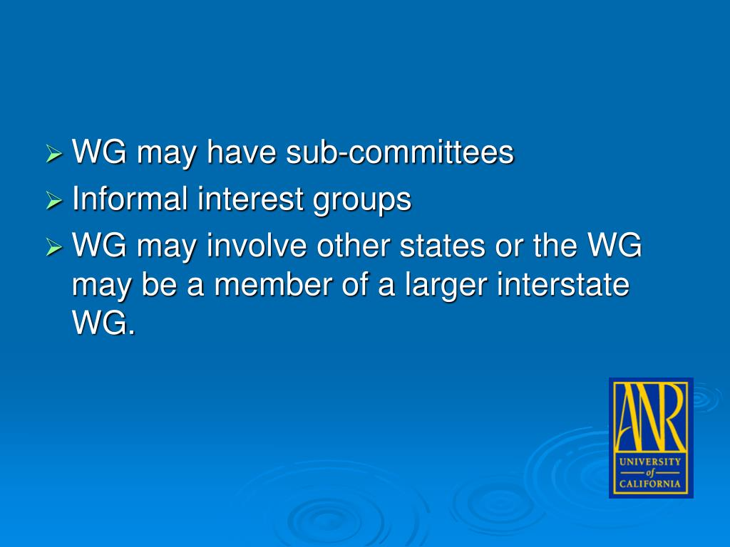 WG may have sub-committees