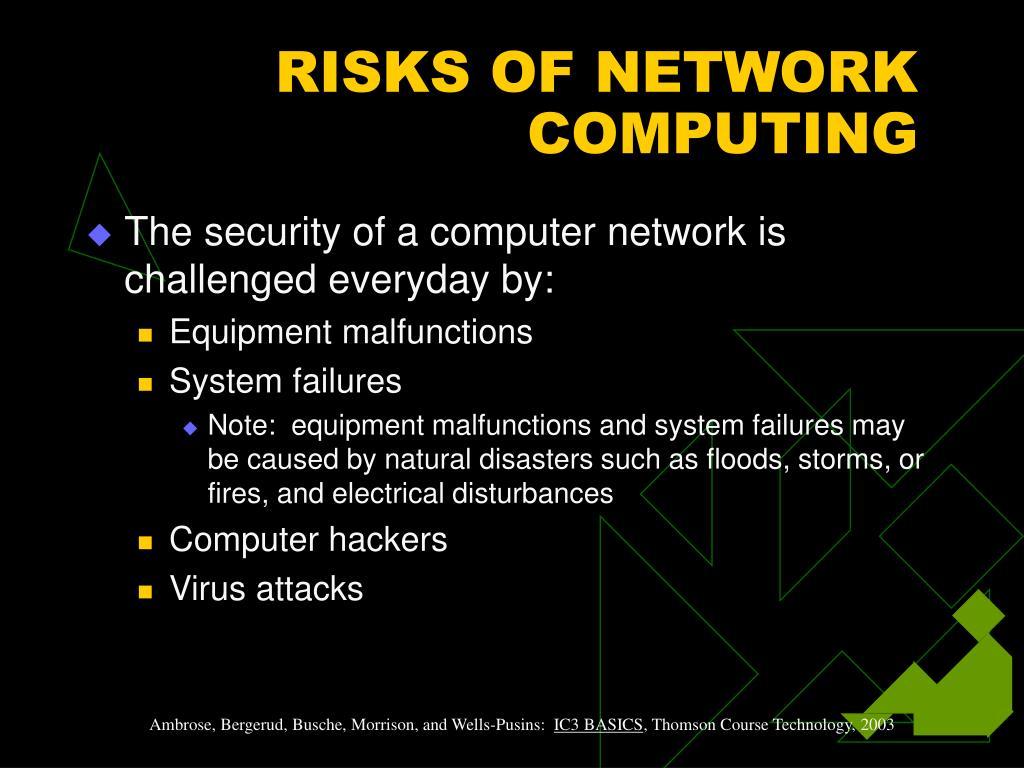 RISKS OF NETWORK COMPUTING