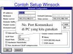 contoh setup winsock53