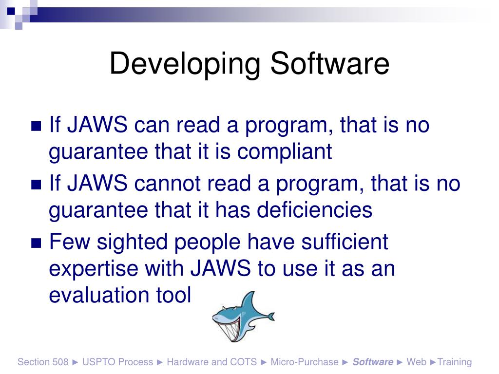Developing Software