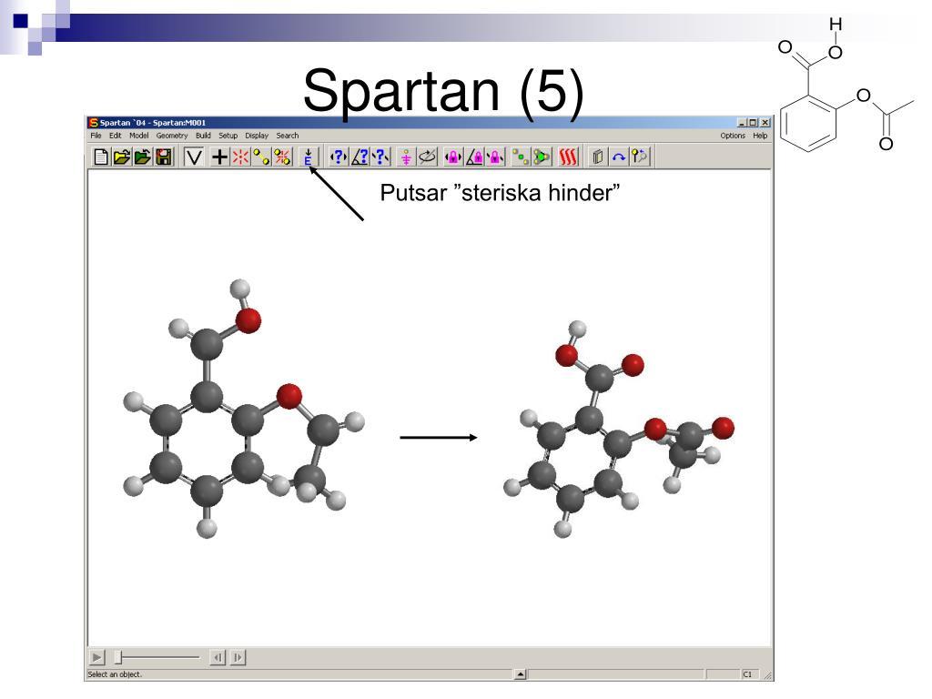 Spartan (5)