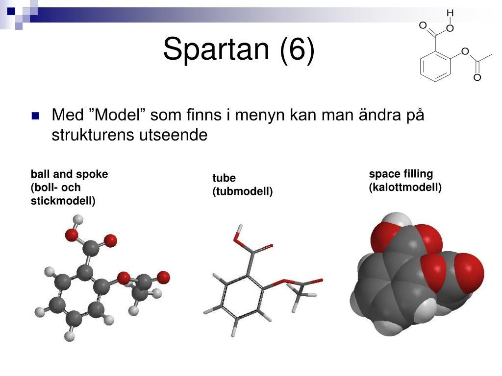 Spartan (6)