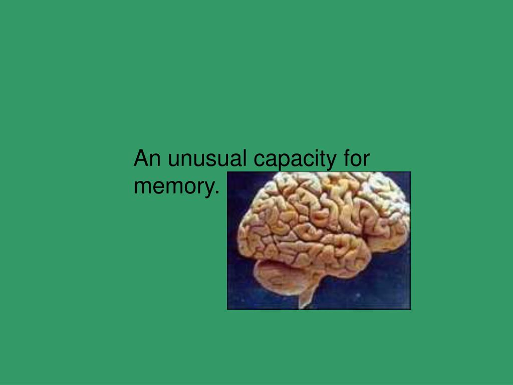 An unusual capacity for memory.