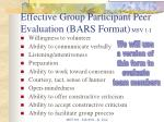 effective group participant peer evaluation bars format msv 1 i