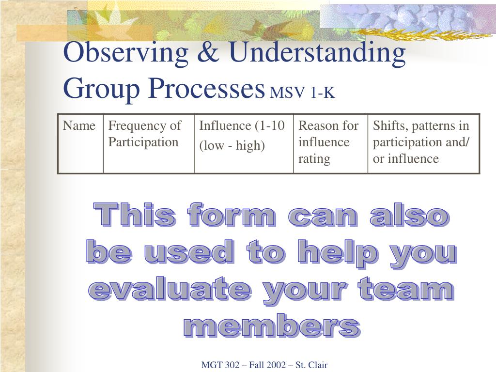 Observing & Understanding Group Processes