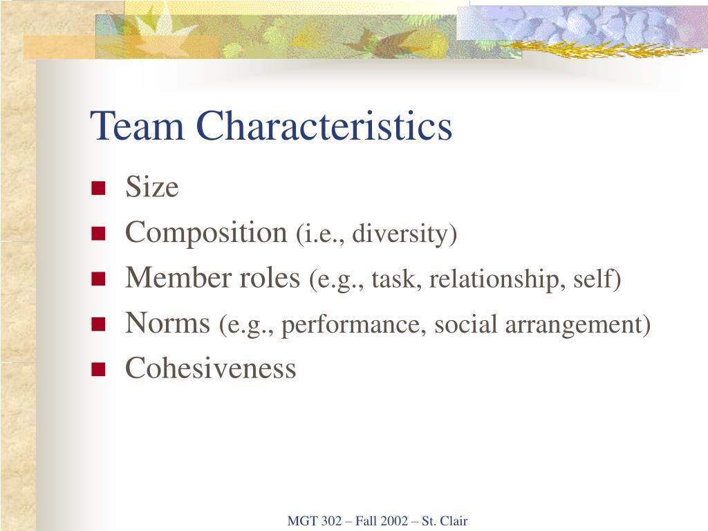 Team Characteristics