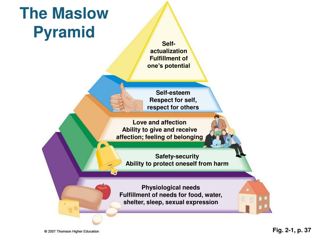The Maslow Pyramid
