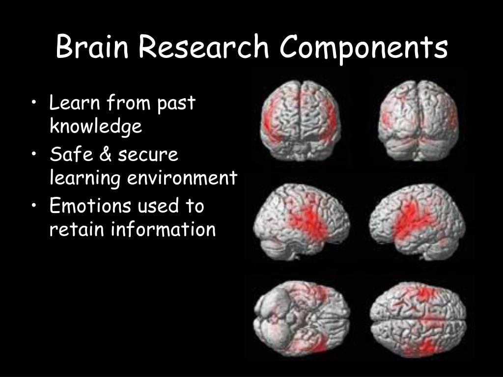 Brain Research Components
