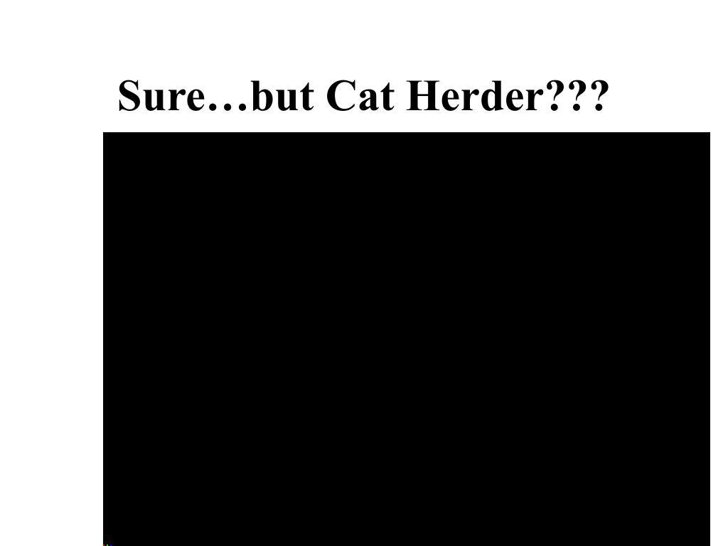 Sure…but Cat Herder???