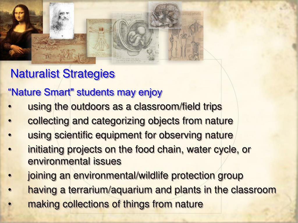 Naturalist Strategies