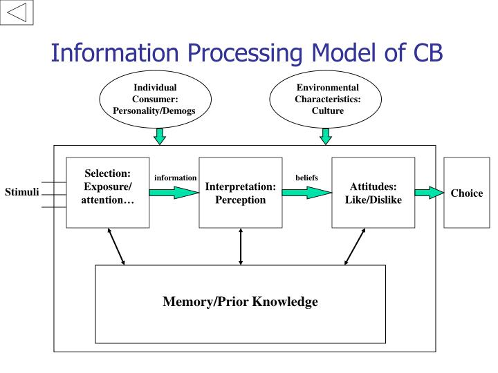 Information processing model of cb
