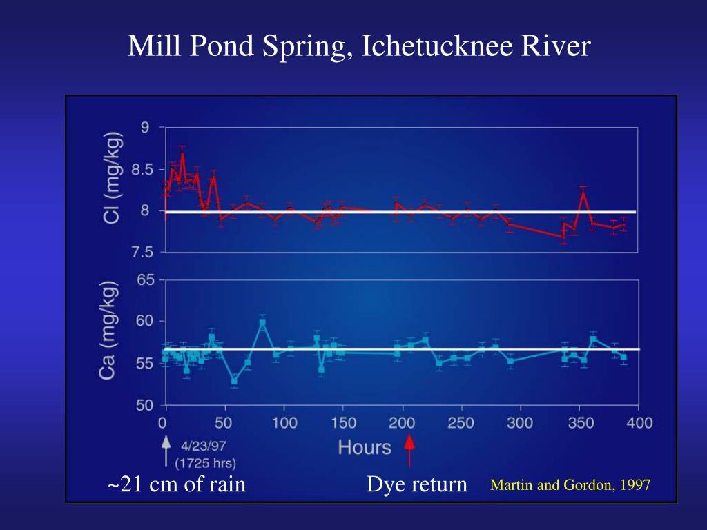 Mill Pond Spring, Ichetucknee River