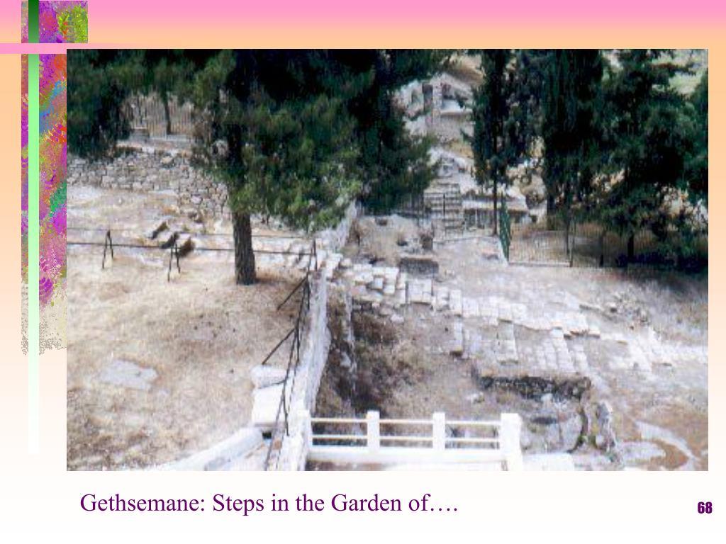 Gethsemane: Steps in the Garden of….