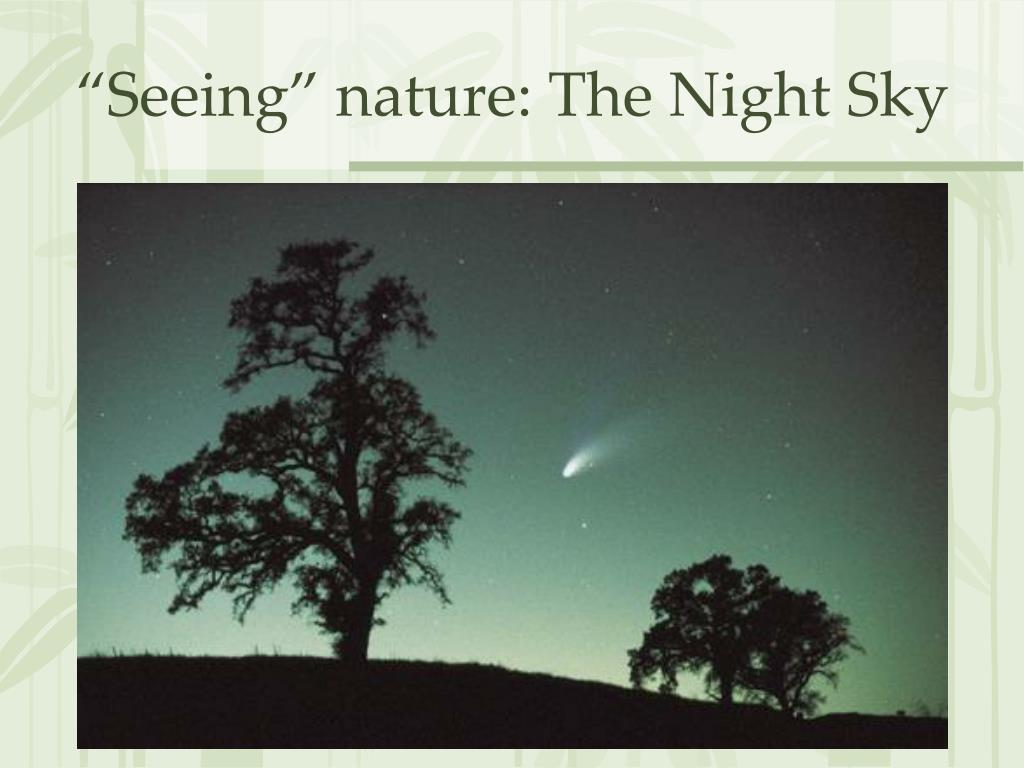 """Seeing"" nature: The Night Sky"