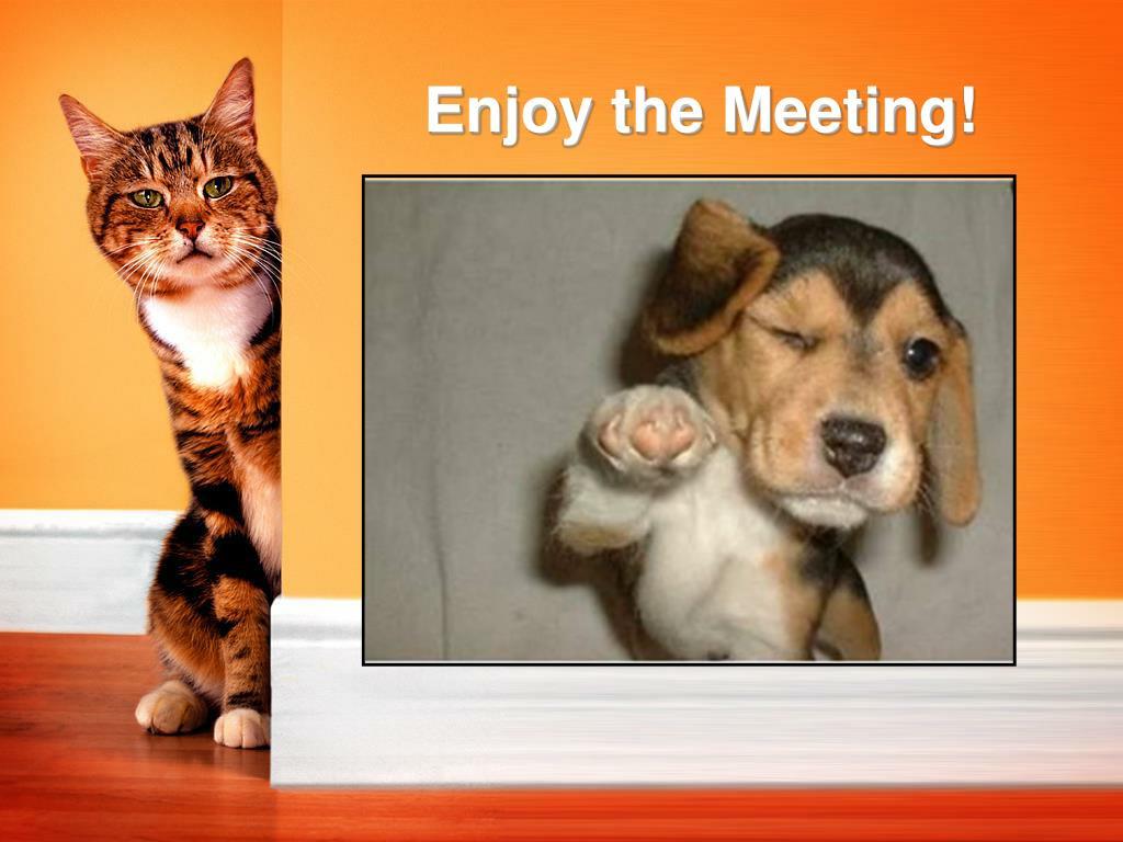 Enjoy the Meeting!