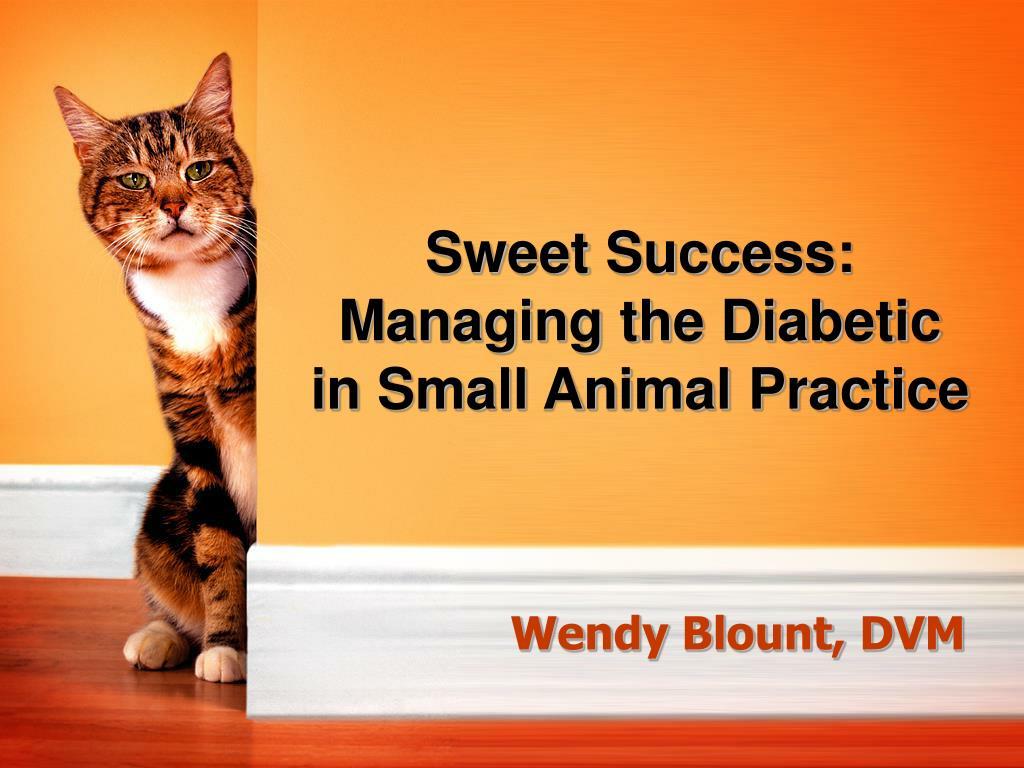 Sweet Success: