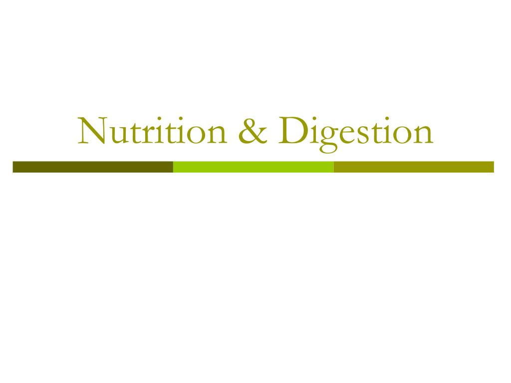 Nutrition & Digestion