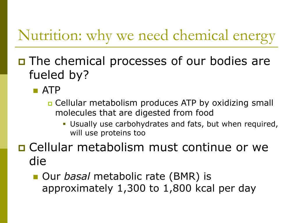 Nutrition: why we need chemical energy
